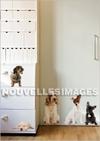 Stickers_nouvelles_images